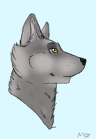 Wolf HD by Saphirfluegel97
