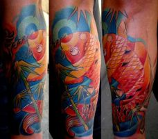 koi new by scottytat2