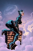 Selina Kyle by J-Skipper