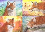 Four Foxy Seasons by dawndelver