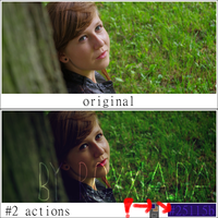 Photoshop action 12 by roxxia