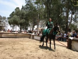 More Knight Joust Stock 040 by tursiart
