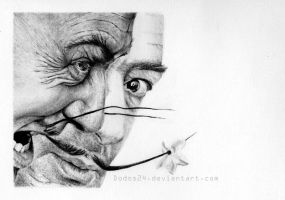 Different faces of Dali by Dodos24
