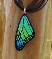 Green Mix Glass Butterfly Wing by FusedElegance