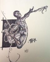 Spidey for Tex by ComicAJ