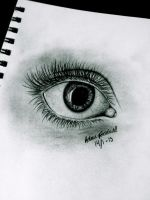 Realistic eye drawing by helenelouisa