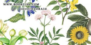101113_flora10_by_eleven by eleven1627