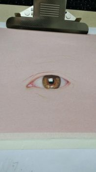eye wip by bluemo0on