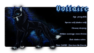 Voltaire Ref. Sheet by norochan