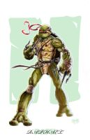 Raph by Darkness33