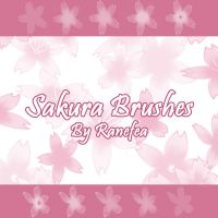 Sakura Brushes by Ranefea