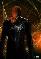 New Black Spider-man transform by mike3452