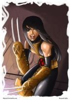 X-23 by shiprock