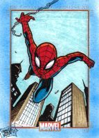 MARVEL 75th - SPIDERMAN by JASONS21