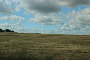 Field/cloud/background stock by BeccaB323