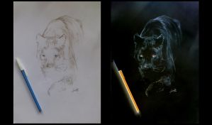 Black Panther Negative Drawing by turanneth