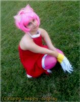 Amy Rose by Crappy-Happy-Cosplay