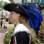 Musketeer Hat Update by MistressKristin