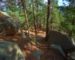 Backwoods Rock Rendezvous by greenunderground
