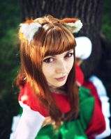 Horo - Spice and Wolf bawarian dress by MilenaHime