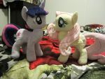MLP fluttershy and twilight sparkle plush by Little-Broy-Peep