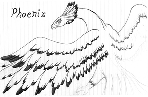Phoenix - quick sketch by TarasqueProductions