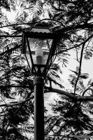Lamp by droy333