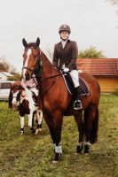 Competition - Show Jumping by RvS-RiverineStables