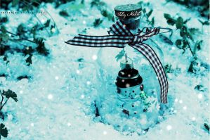 snowman in a bottle by catiaanjos