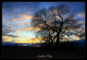 Another Day by Sagittor