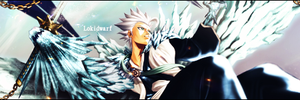 toshiro sig req by acesoontobefamous
