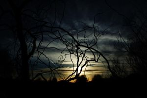 the night the sky shattered by Midnyte-Sun
