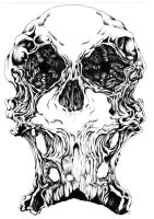 Ink Skull by cav