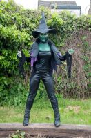 wicked witch of the west 7 by XNBcreative