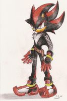 Shadows New Look by Super-Sonic-101