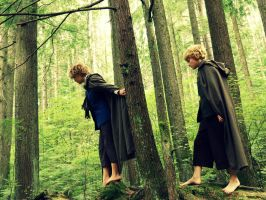 To Isengard! by mindless-cosplay