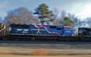 6920 Pace by CSX5344