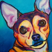 Chihuahua 4 sable by StudioSRV