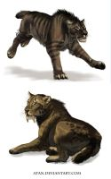 Ancient Cats by Atan