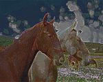 horses by ChaelMontgomery