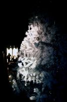 Christmas tree in the Gatchina Palace.1 by Bobbyus