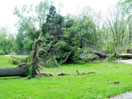 Storm Damage May 2009 04 by FlashBazbo56
