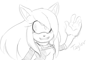 Sketch Request: Taylor by FlashnTails