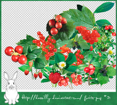 fruits png 21P by kassilly