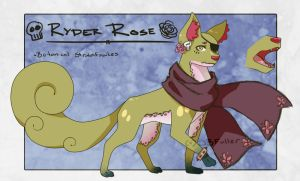 Ryder Fawkes by Bostonology