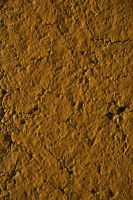 Painted Asphalt Texture 1 by WhiteWing-Stock-EtAl