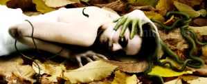 Decomposition by Driven-Crazy