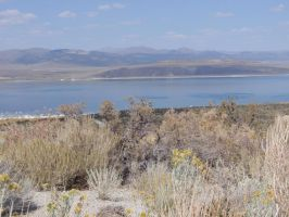 Mono Lake Photo Series 034 by lilly-peacecraft