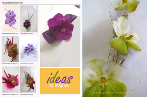 ideas to inspire by Toash