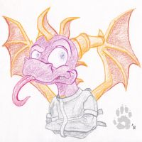 SC - 13 Insane Spyro by CanineHybrid